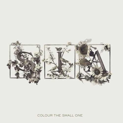sia_furler_colour_the_small_one