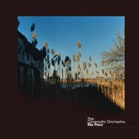 to_build_a_home_cinematic_orchestra