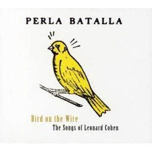 bird_on_the_wire_perla_batalla