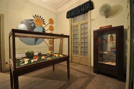 World_Agriculture_Museum_detail_Feeding_the_World.Credits_Photo_Asuncion_Molinos_Gordo