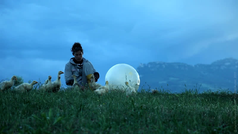 'Moon Goose Analogue: Lunar Migration Bird Facility'. Agnes Meyer-Brandis (Alemania) VIDA 15 - Segundo premio.