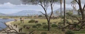 Panorama de Olduvai. MAURICIO ANTÓN.