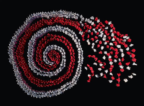 Espiral de solidaridad. © Ouka Leele.