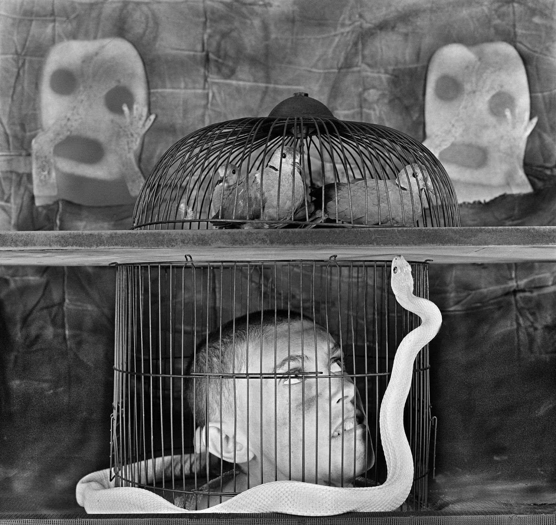 Roger Ballen. Caged. Asylum of the birds. 2011.