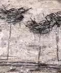 Carolina Amigo. Nius arbres