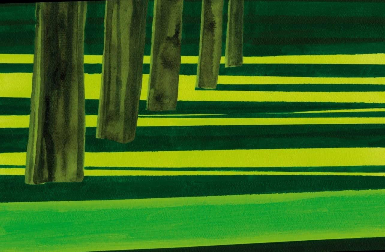 Izabella Godlewska. Las últimas sombras del atardecer. 2007.