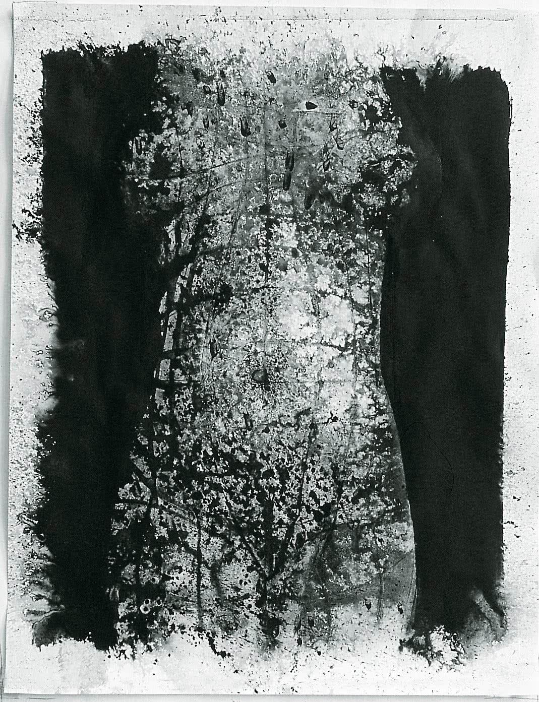 Eulàlia Valldosera. <em>Tors frontal</em> (serie <em>El ombligo del mundo. Tintas #34</em>). 1990.