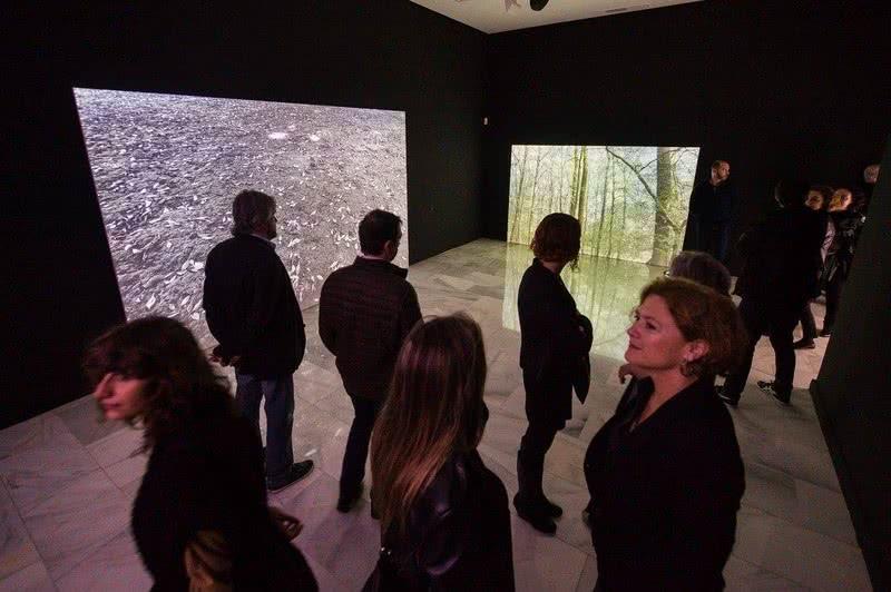 Exposición de Glenda León en el CAAM.