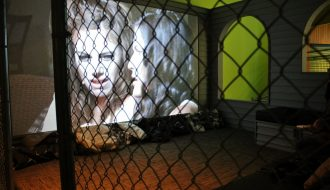 Exposición 'Lizzie Fitch/Ryan Trecartin. Priority Innfield'. Foto: Sonia Aguilera.