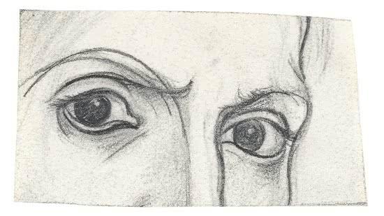 Pablo Picasso. Los ojos del artista. París, 1917. Lápiz sobre papel vitela, 5 x 9 cm. © Museo Picasso Málaga Foto: Rafael Lobato © Sucesión Pablo Picasso, VEGAP, Madrid, 2016.