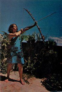 Anna Bella Geiger. Nativo Brasil alienígena, 1977.
