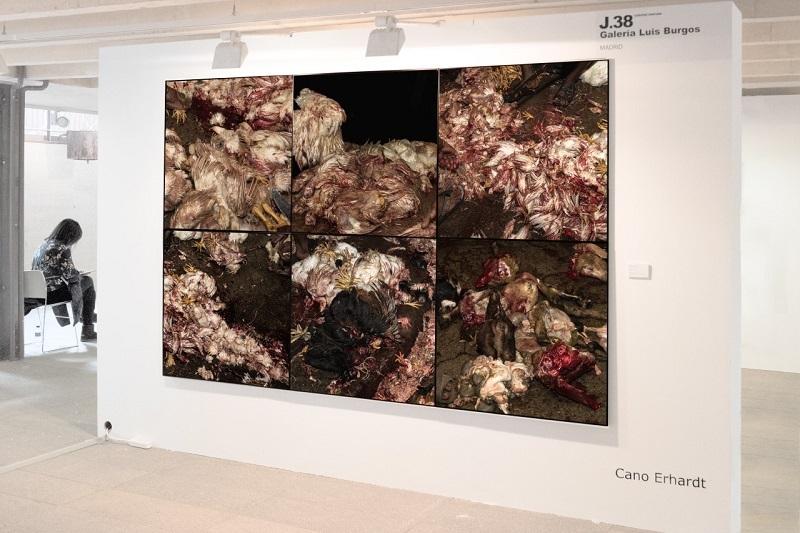 'It's a still life', 2016. Cano Erhardt. Galería Luis Burgos en Jusmad 2017.