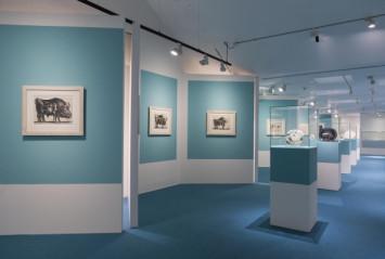 Picasso y el Mediterráneo. © Fundación Canal.