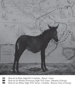 Adriana Bustos. Antropología de la mula, 2009. De la serie ANTROPOLOGÍA DE LA MULA (2007-2011). Cortesía de la artista.