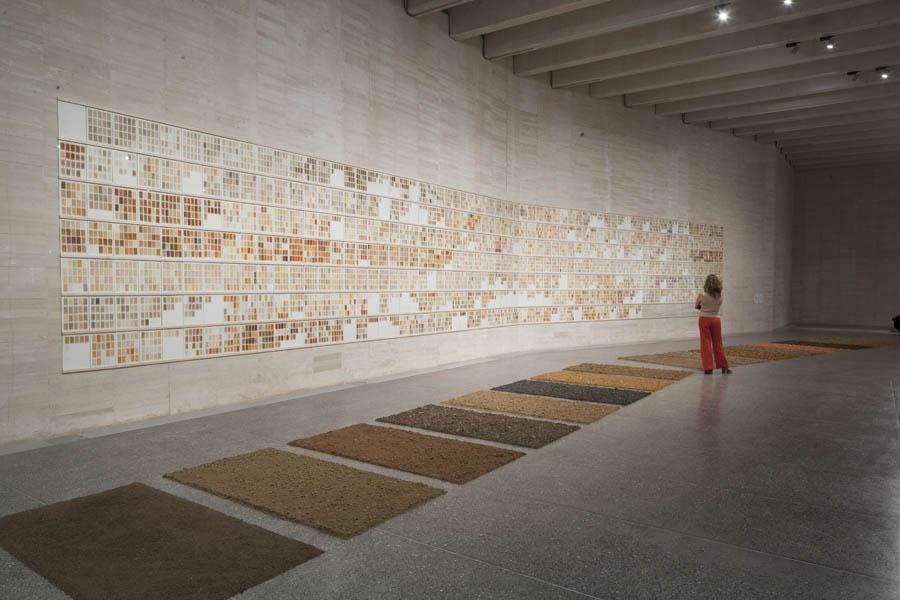 herman de vries, 'chance & change'. Vista de la exposición en MUSAC, Museo de Arte Contemporáneo de Castilla y León.