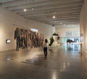 'Hybris'. Una posible aproximación ecoestética. Vista de la exposición en MUSAC, Museo de Arte Contemporáneo de Castilla y León.