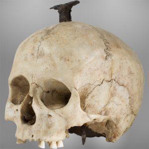 Cráneo ibérico enclavado, Museu d'Arqueologia de Catalunya, Barcelona.