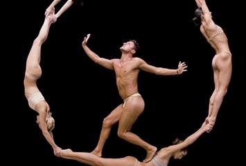 no gravity dance