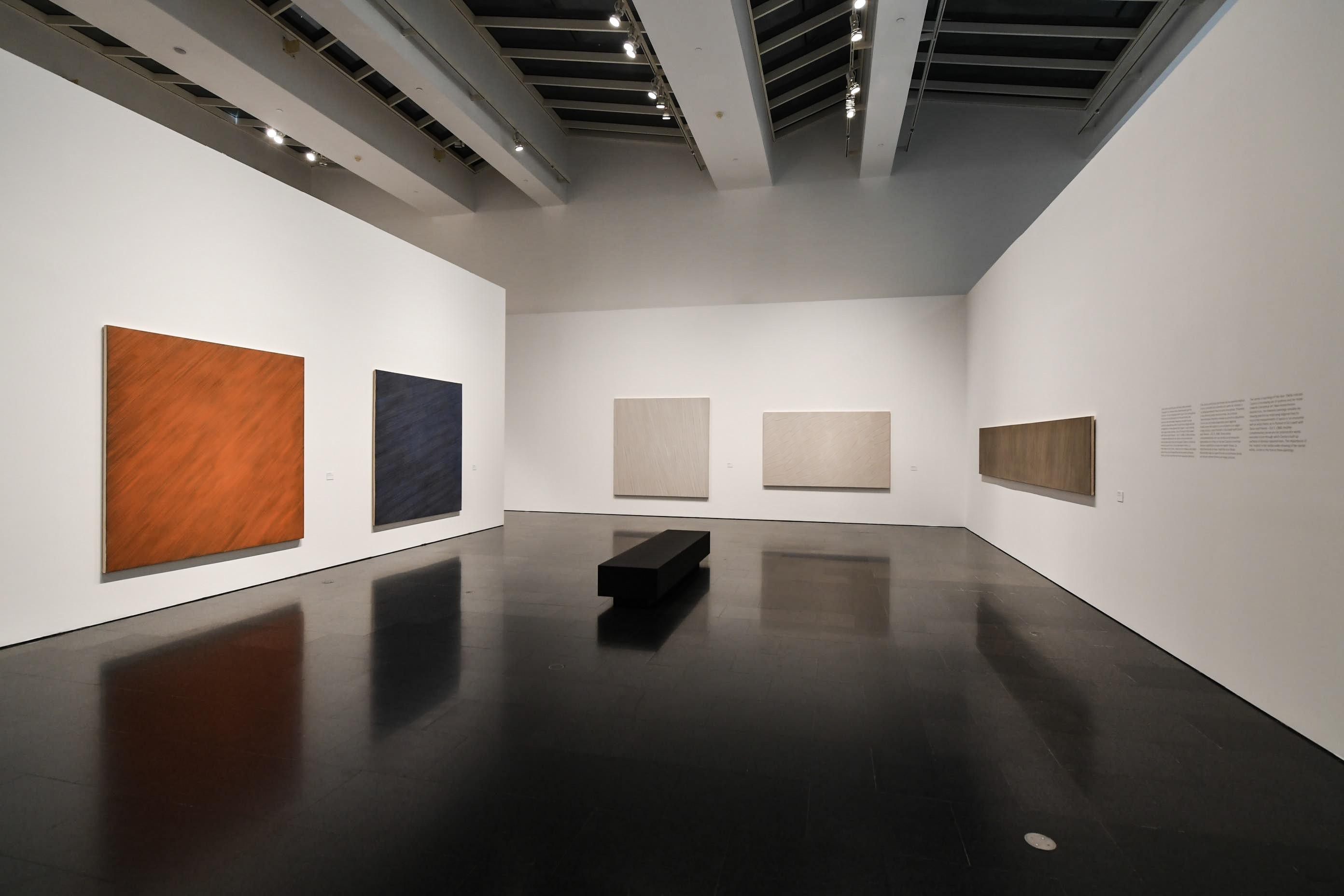 ROSEMARIE CASTORO. FOCUS AT INFINITY. Vista de la exposición. Foto: Miquel Coll.