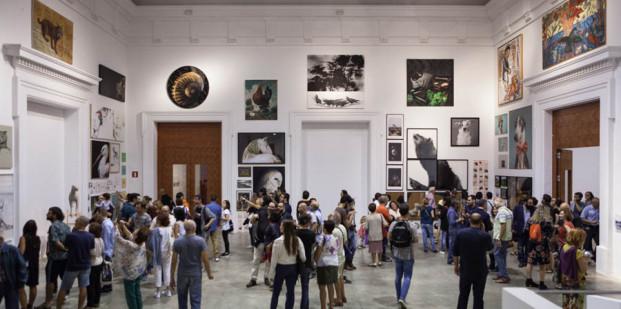 Centre del Carme 2017