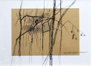 Lo que esconden los árboles III. TATIANA BLANQUÉ. Dibujo/papel 30x40 cm.