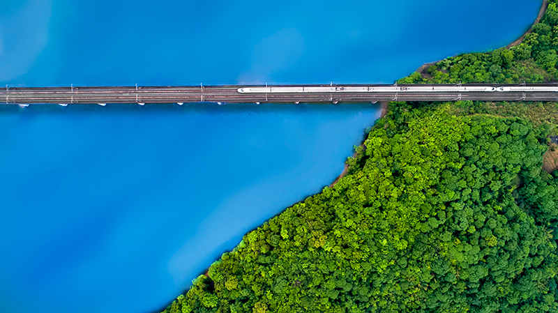 Between green and blue, de Guanghui Gu.