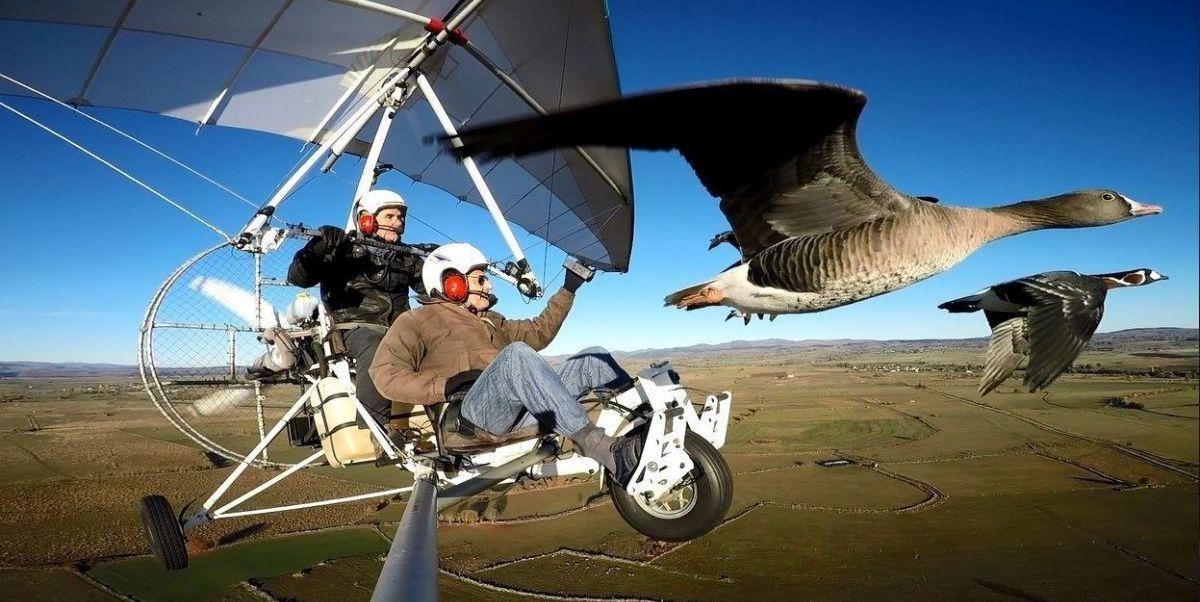volando-juntos-pelicula-critica-1580212452