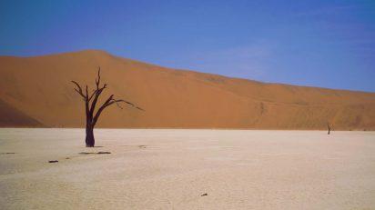 Desierto del Namib. © Luis Domingo.