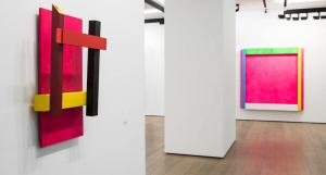 Exposición de Rosa Brun en la Galería Fernández-Braso.